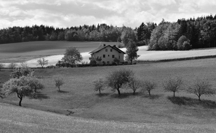 house in field